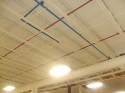 Ceiling painting after